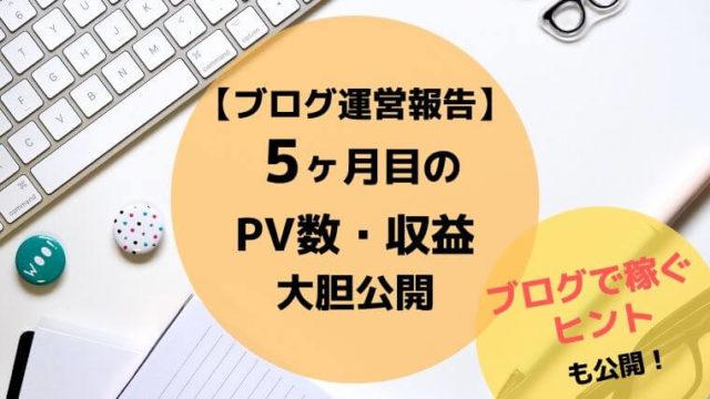 ブログ5ヶ月目のPV数・収益を大胆公開