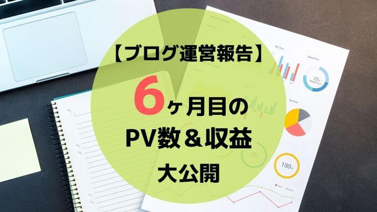 ブログ6ヶ月目のPV数・収益